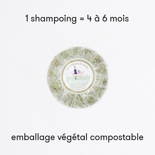 Shampoing solide cheveux gras