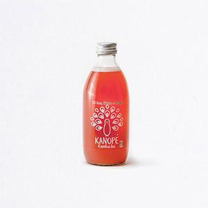 Kombucha églantier hibiscus menthe