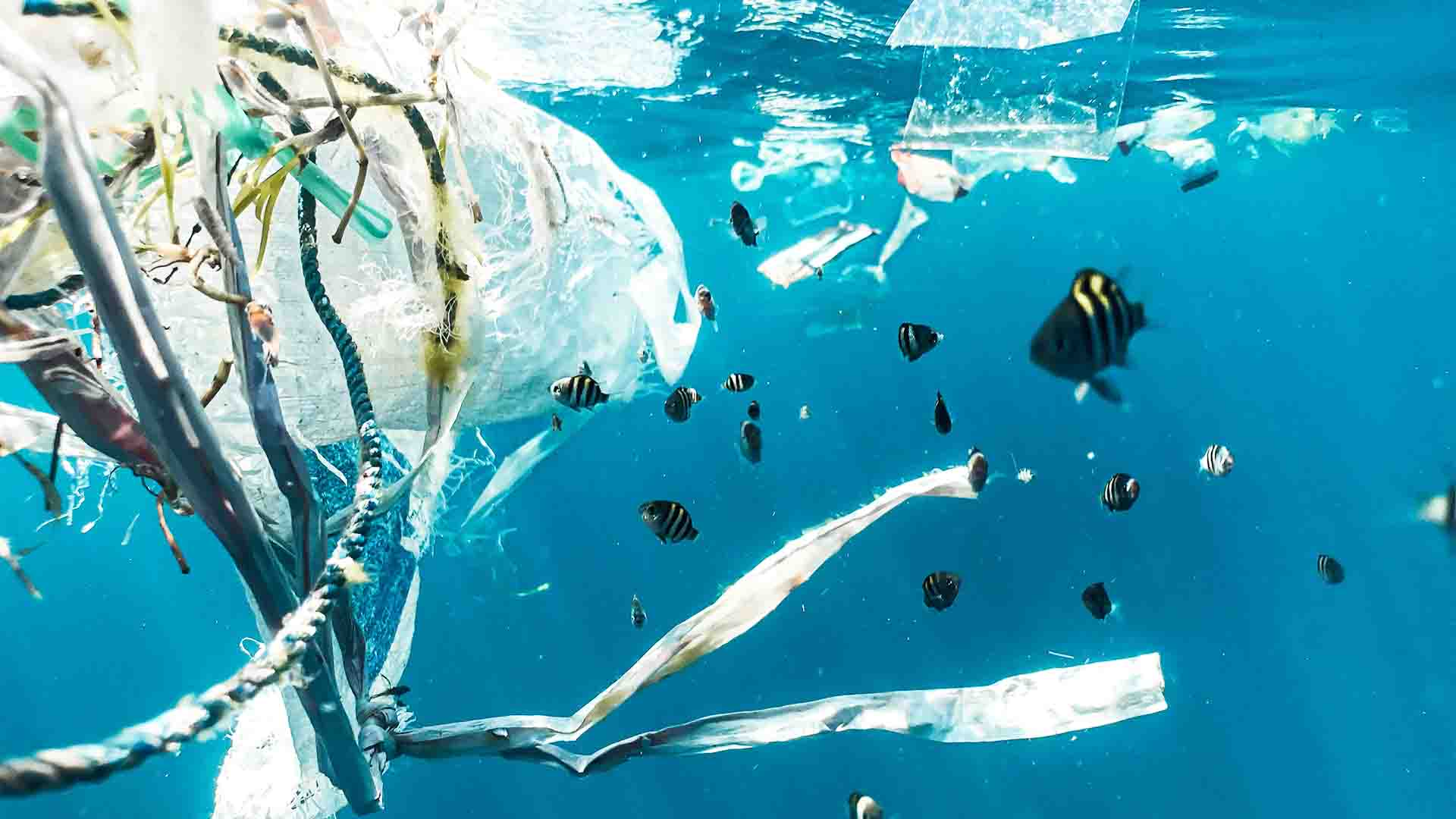 déchets mer vacances eco responsables