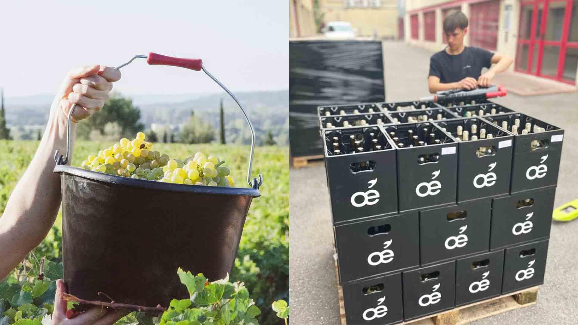 vin bio français oé zéro déchet consigne l'intendance
