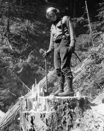Rande McCabe, Logging in Western Washington