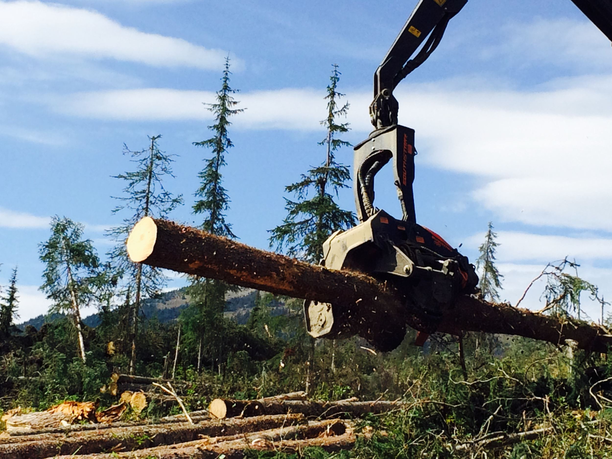 Rotary union for forestry