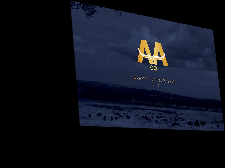AACo presentation