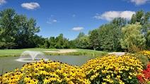 Golf field image