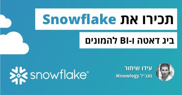 讛讻讬专讜 讗转 Snowflake: 讘讬讙 讚讗讟讛 讘注谞谉 诇讛诪讜谞讬诐