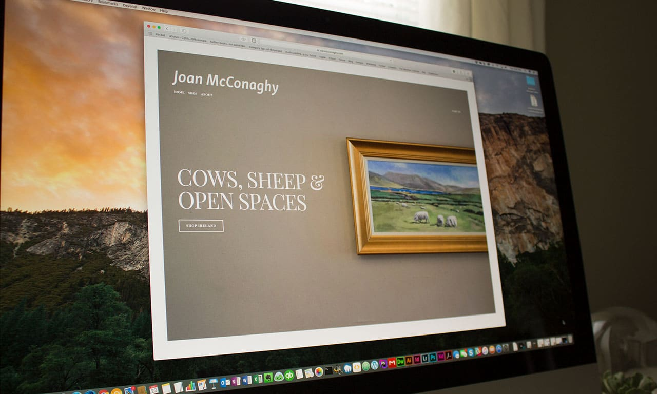 Screen shot of Joan McConaghy's homepage