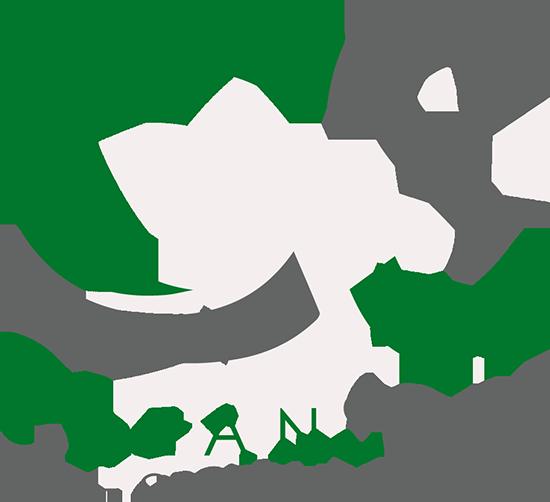 logo_creansoft