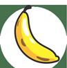 logo_evoliz