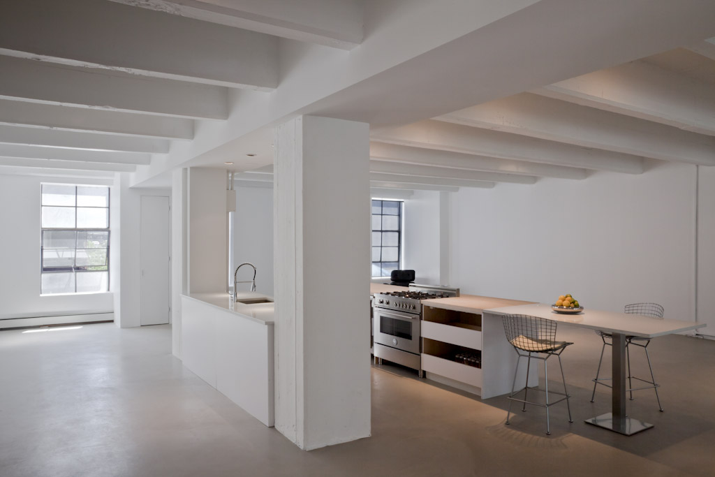 Deluca Loft house design