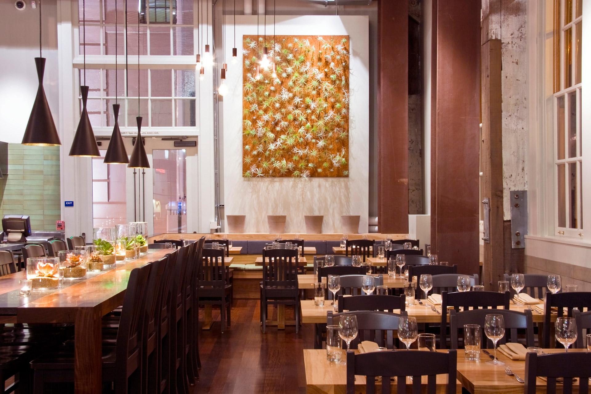 The Plant: Café Organic restaurant design