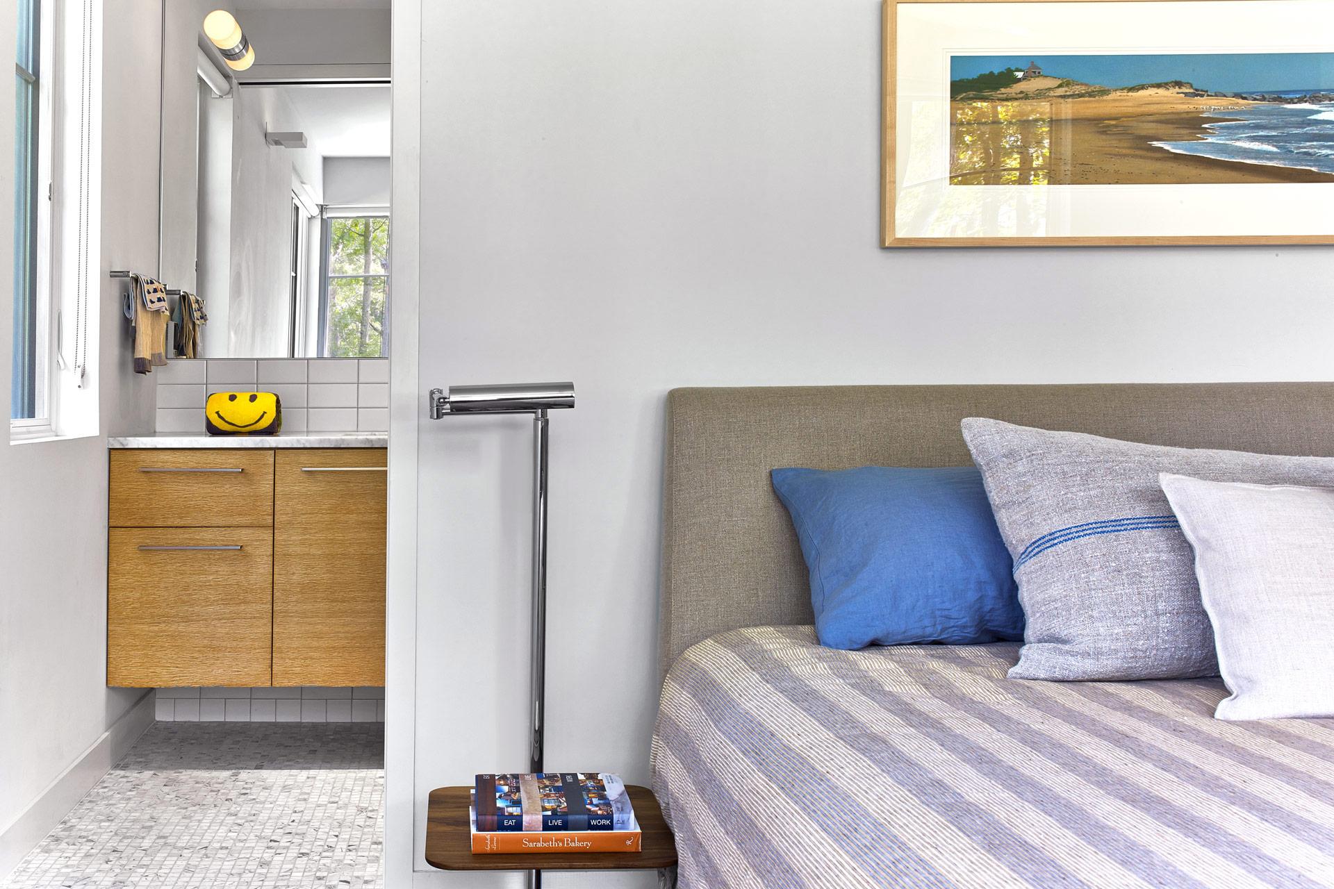 Levine Residence modern home
