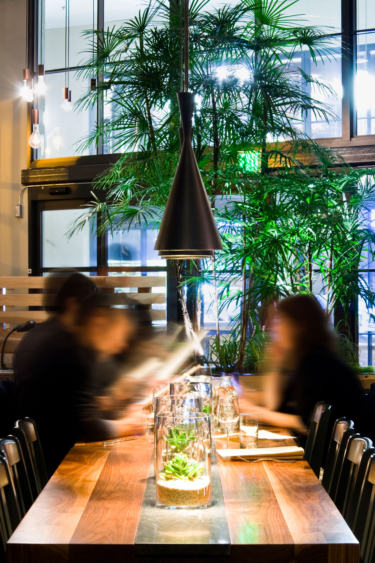 The Plant: Café Organic restaurant interiors