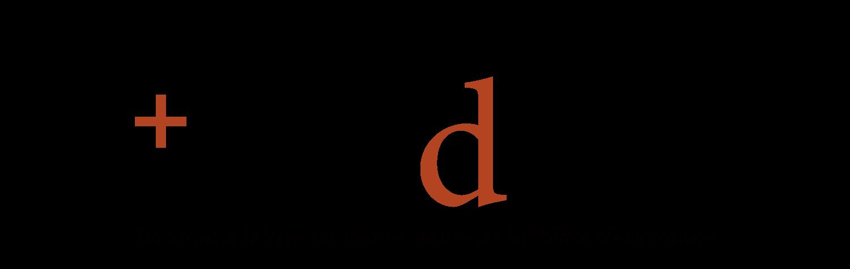 Logo Link Mednic