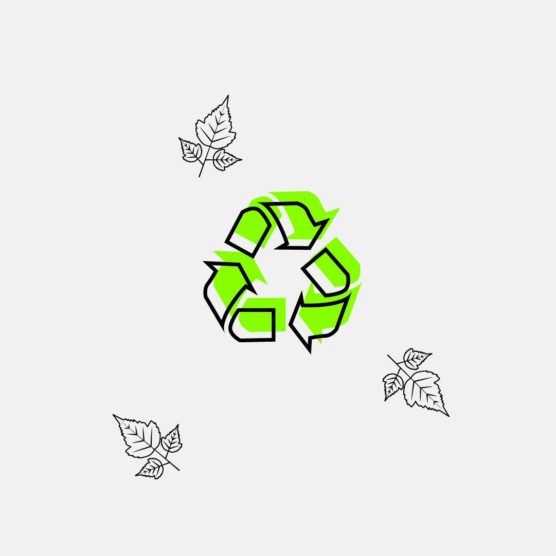 """Jak být """"zelenější"""": Ekologické tipy pro každého"""