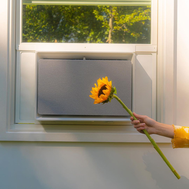 July Air Conditioner in a window with a flower