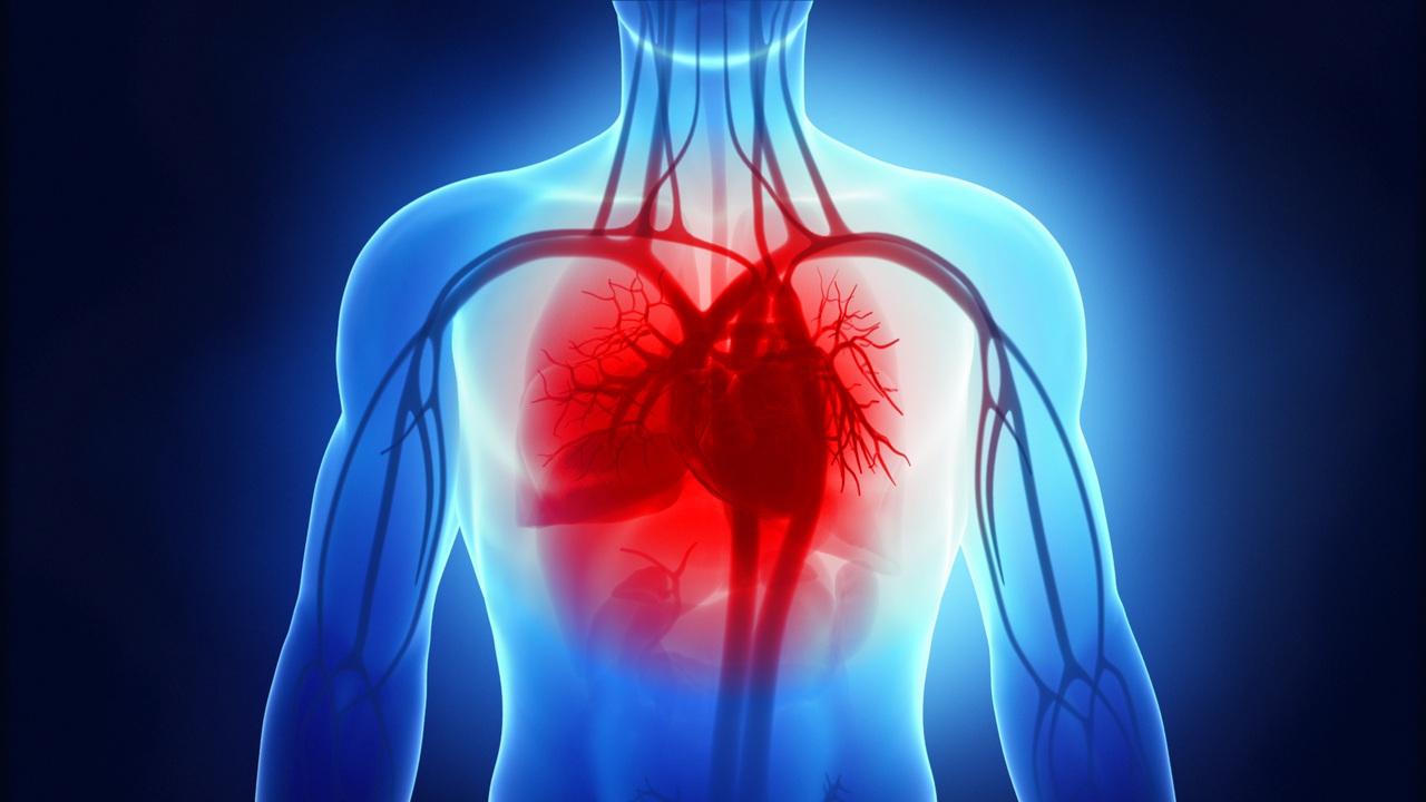 Heart Failure - Willis-Knighton Health System - Shreveport - Bossier City -  Ark-La-Tex