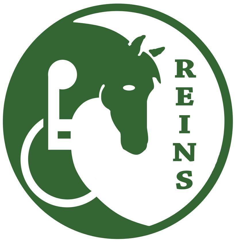 REINS Therapeutic Horsemanship Program
