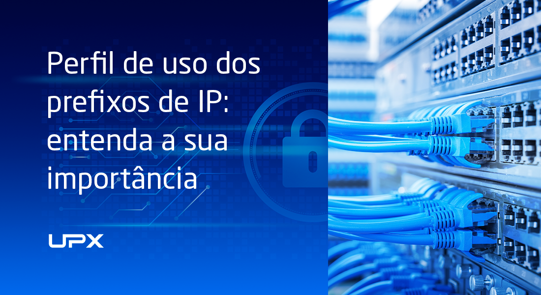 Perfil de uso dos prefixos de IP: entenda a sua importância
