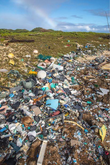 Hawaii coastline with trash