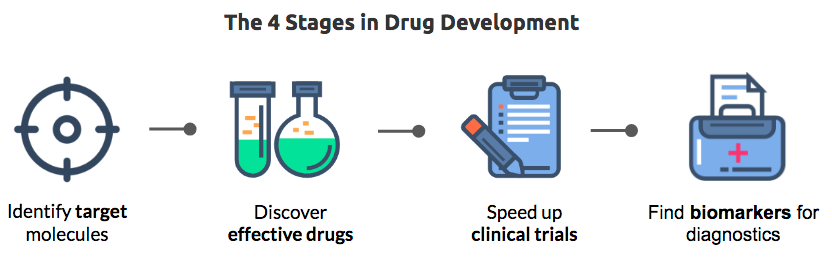 4 stages in drug development