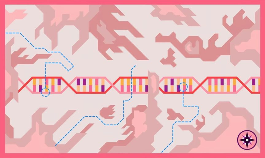 targeted gene-editing