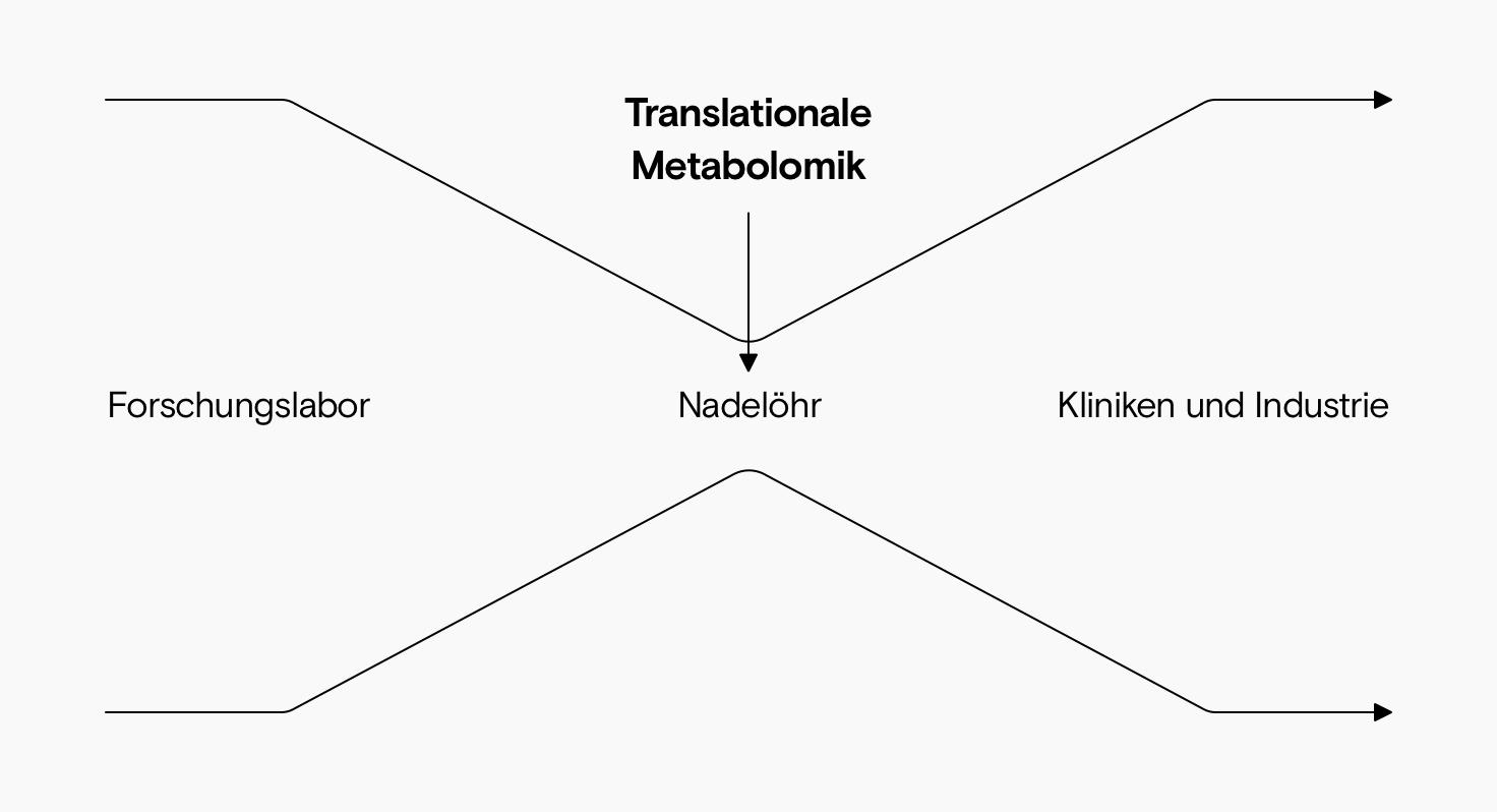 Ein Diagramm, das zeigt, wie neue Erkenntnisse von Forschung zu klinischen Einsatz gelangen. Translationale Metabolomik ist das schwierige Nadelöhr in der Mitte.
