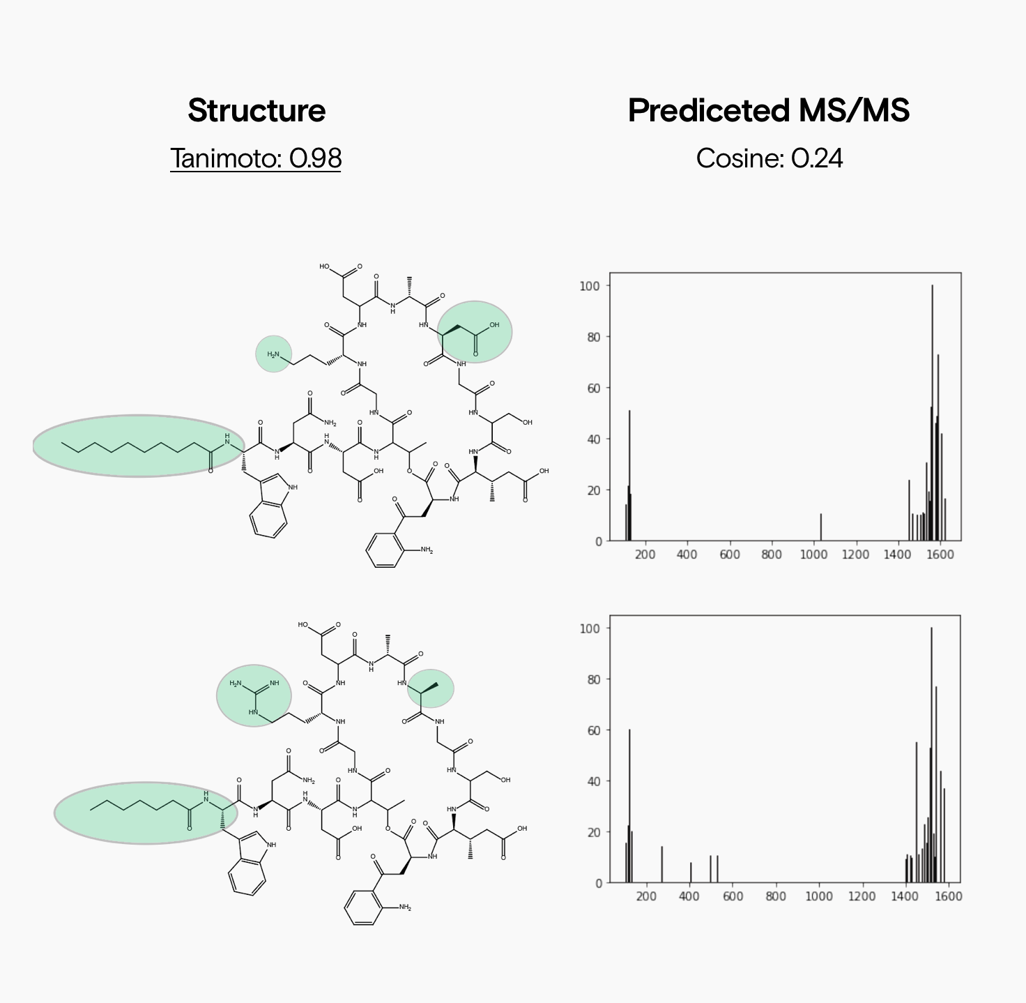 Two cyclic peptides are shown on the right with three minor structural changes in structure highlighted with green circles. Each compound's predicted fragmentation patterns are shown on the right. A Tanimoto score of 0.98 is shown above the structures, and the cosine score of 0.24 is shown above the spectra.