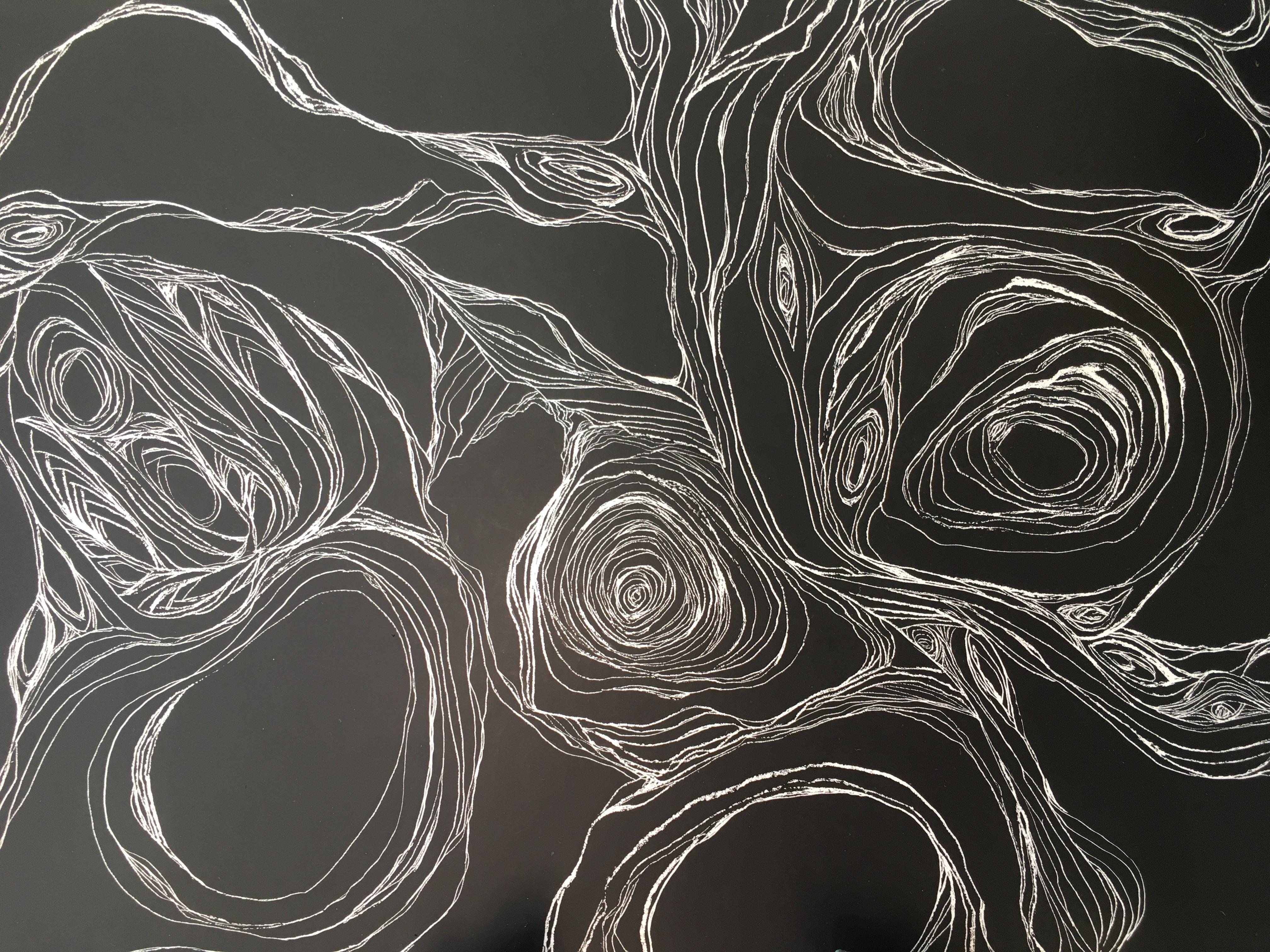 scratch board drawing: Ashen Bloom