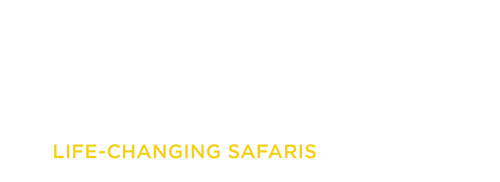 YelloZebra logo