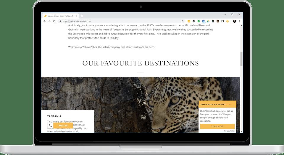 YellowZebra on laptop screen