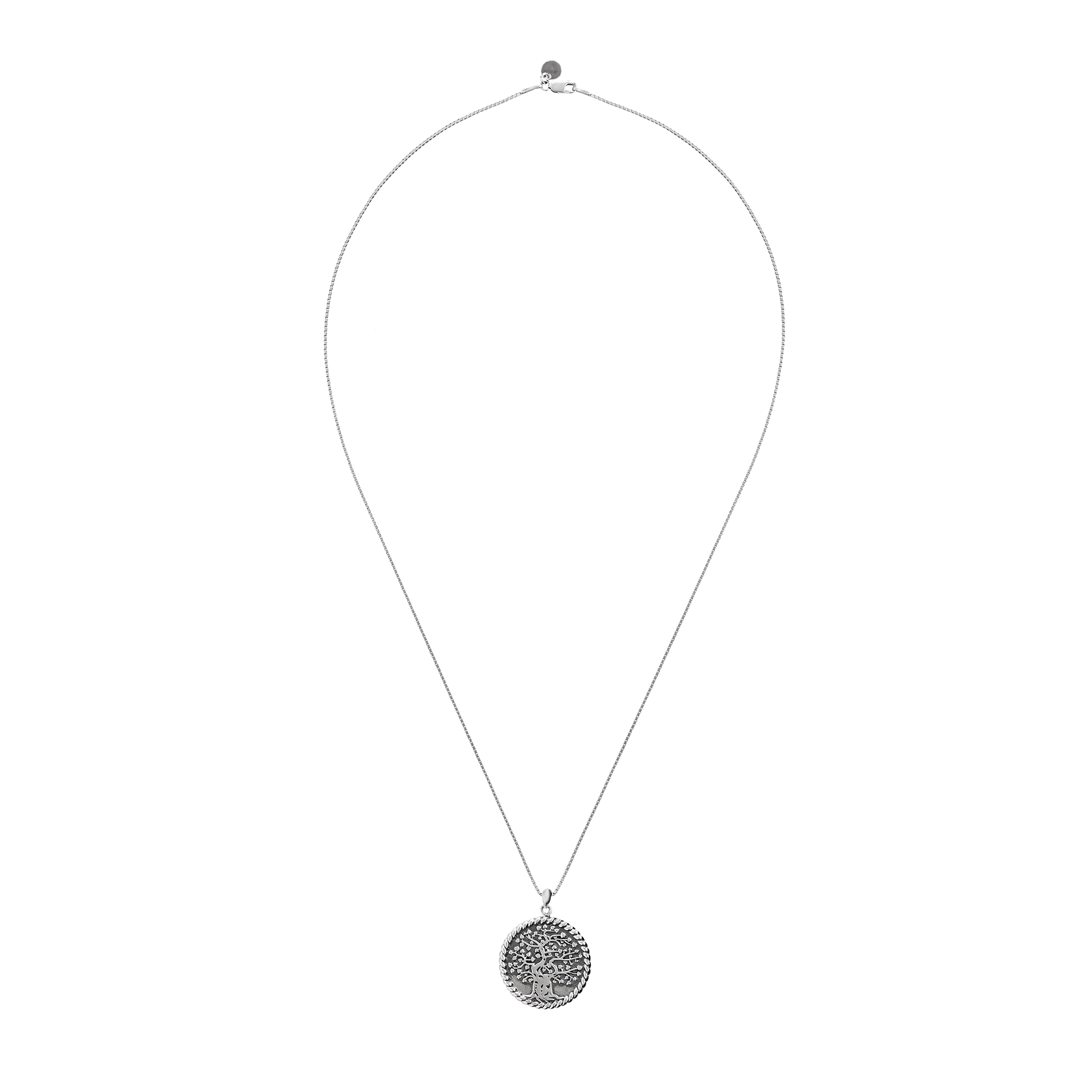 silver Necklace product image