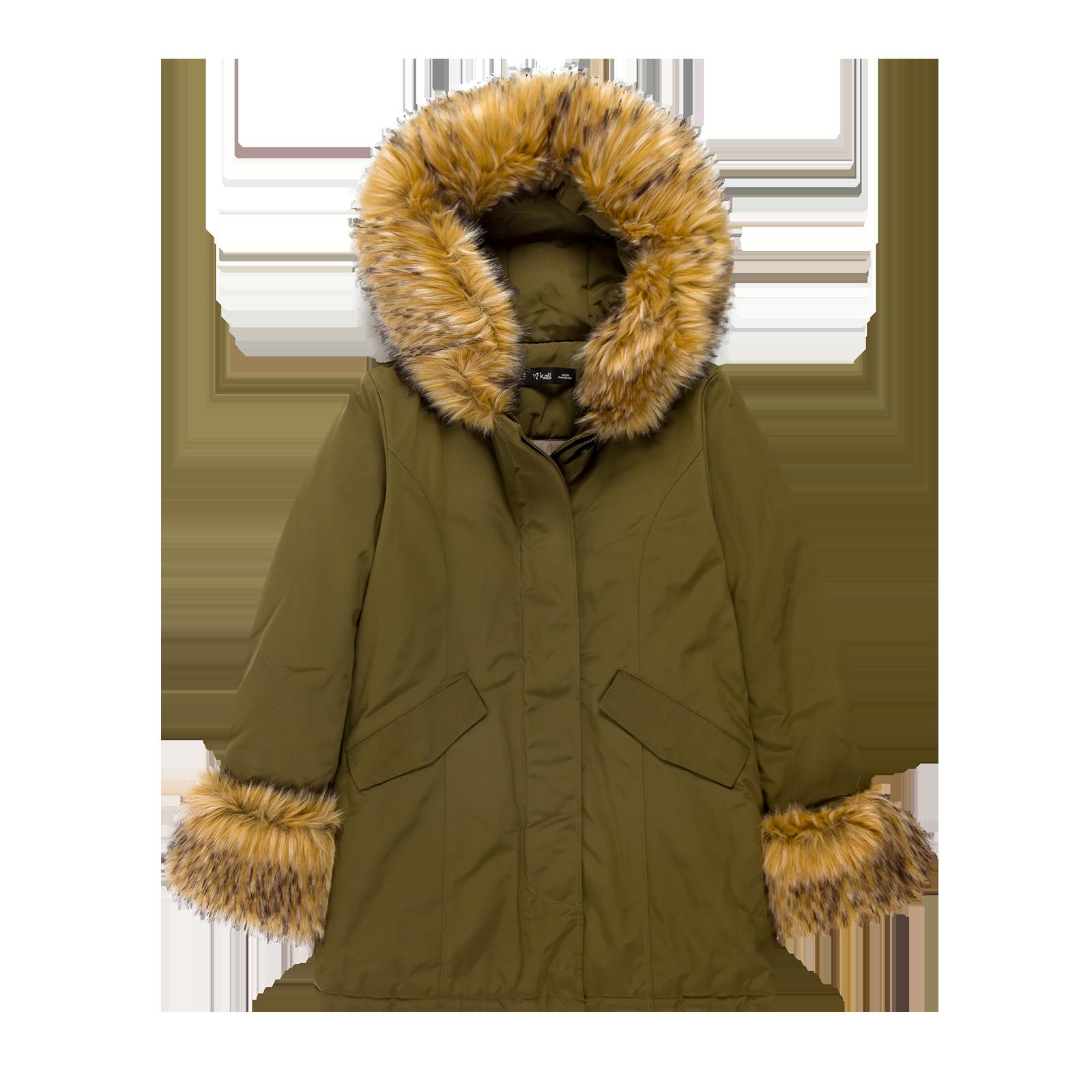 Winter coat product image