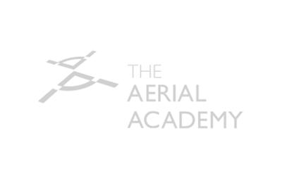 The Aerial Academy