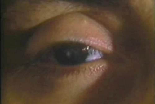 ojo de gemma di giorgi