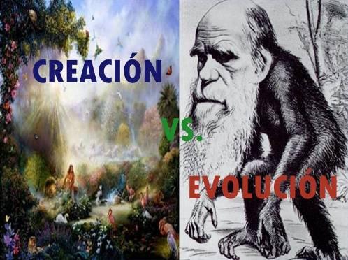 creacion vs evolucion