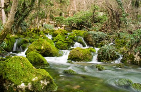 rio de agua viva