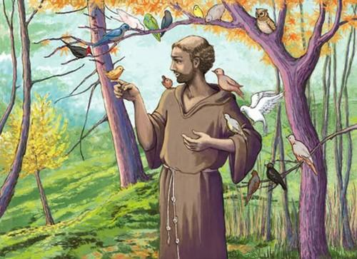 san francisco y los pajaros