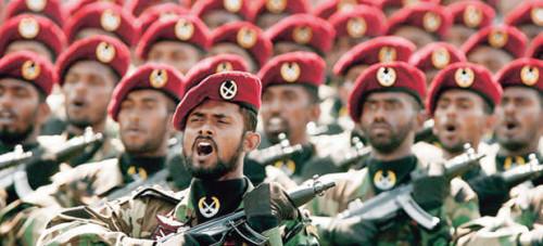 Tigres Tamiles