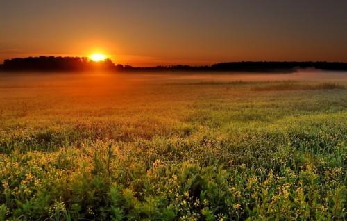 salida del sol sobre el campo fondo