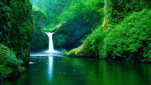 cascada entre verdes