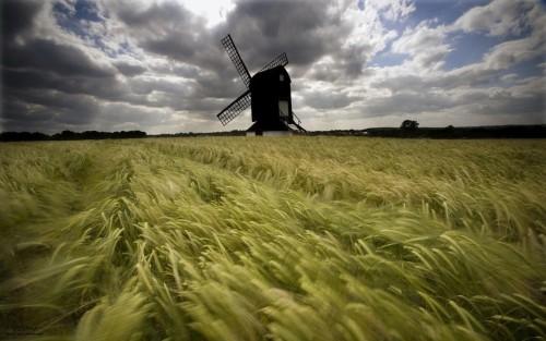 viento y molino