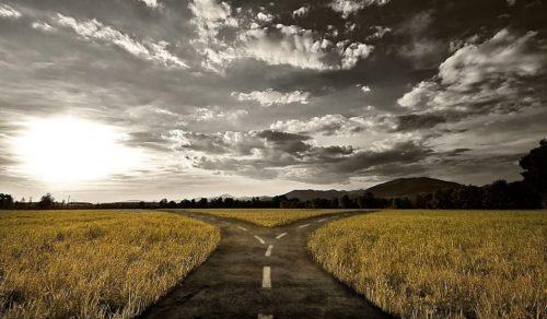 caminos-que-se-bifurcan-libre-albedrio