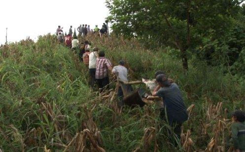 grupos armados de nicaragua