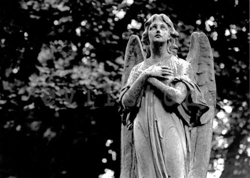 angel por evilstone fondo