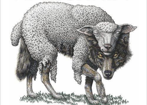 lobo disfrazado de cordero