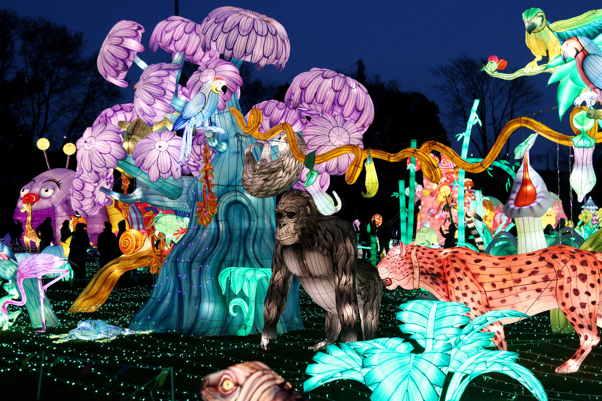 the-lush-rainforest-the-wild-adventure-light-arts-luminocity-festival
