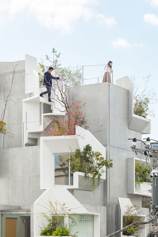 Tree-ness House by Akihisa Hirata