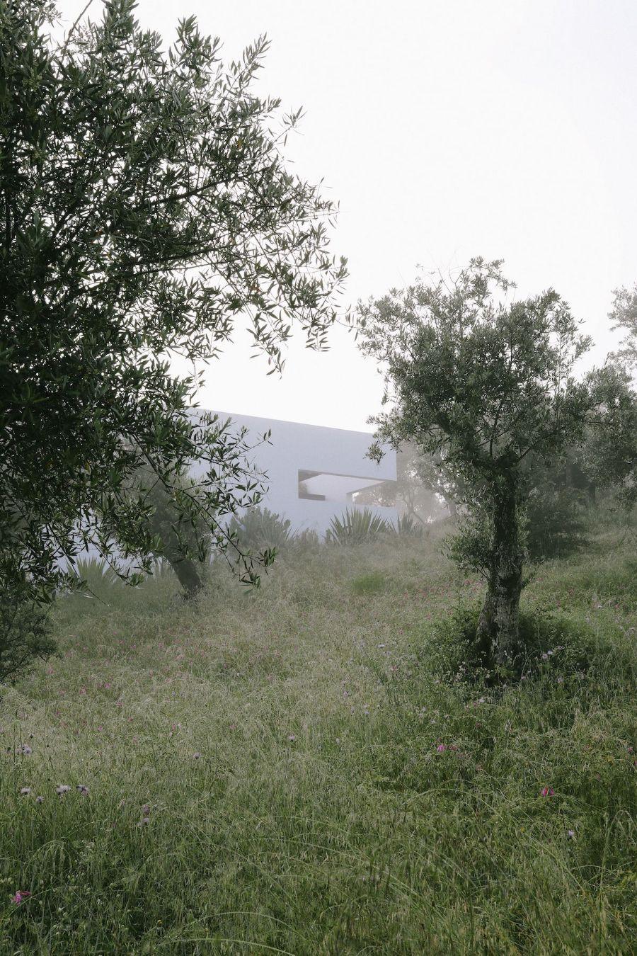 Villa Extramuros captured by Thisispaper Studio