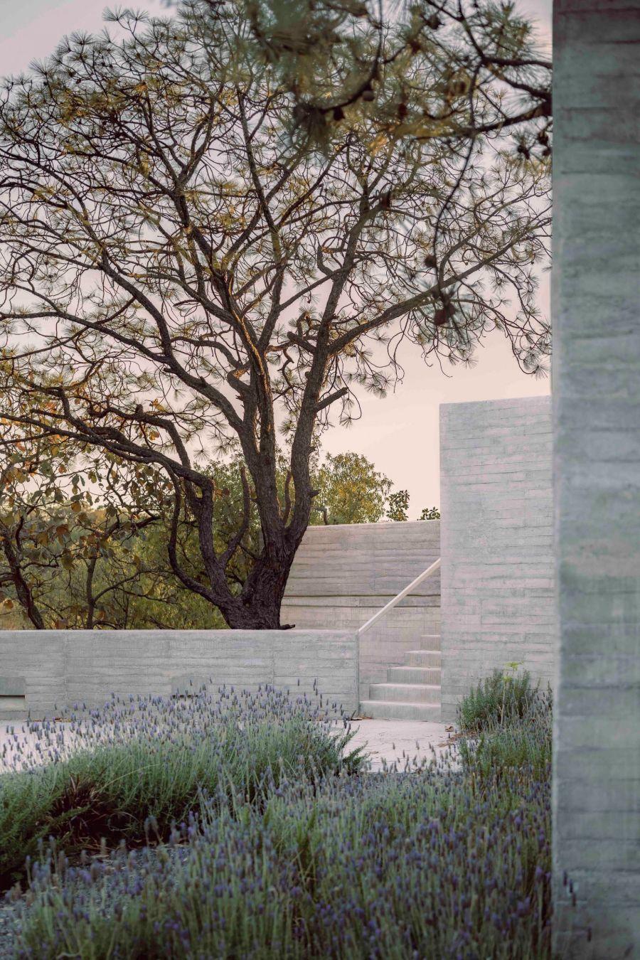 House Amapa by Pérez Gómez Arquitectura