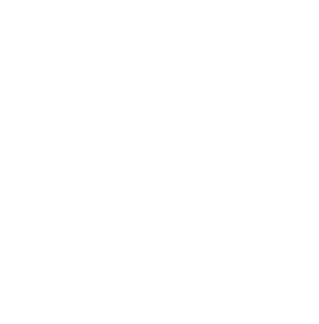 Renegado Google